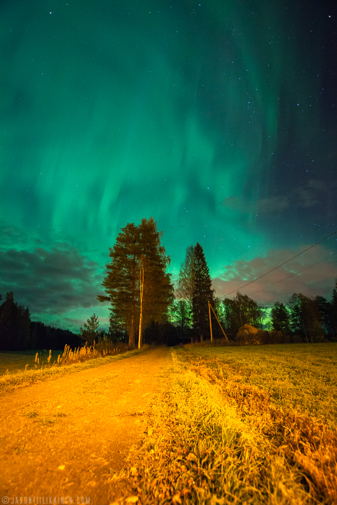 ''NORTHERN LIGHTS & FIELD''. Kontiolahti, Finland.