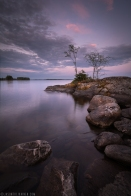 ''PURPLE EVENING''. Finland.