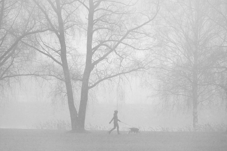 ''MISTY MORNING WALK''. Joensuu, Finland.